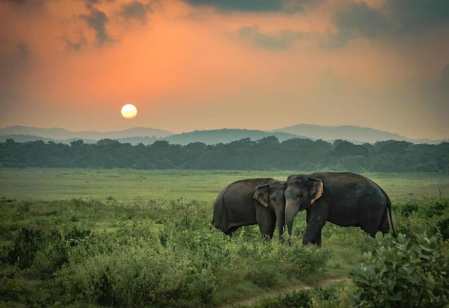 Luxusreisen Südafrika