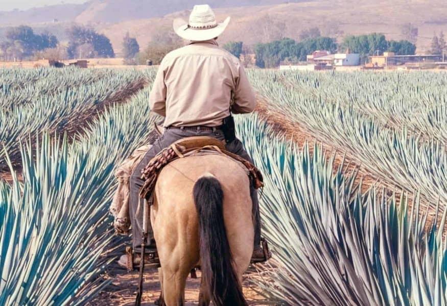 Luxusreisen Mexico